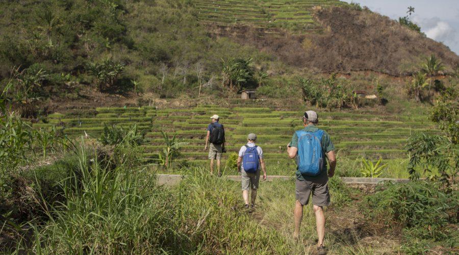 Walking on the rice field in Ruteng